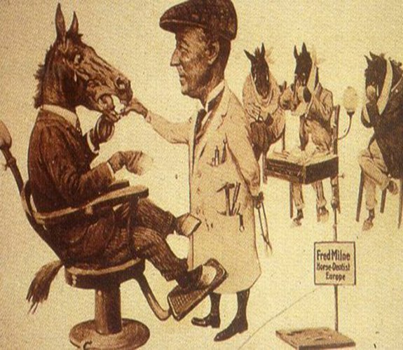 Equine Dentistry Cartoon