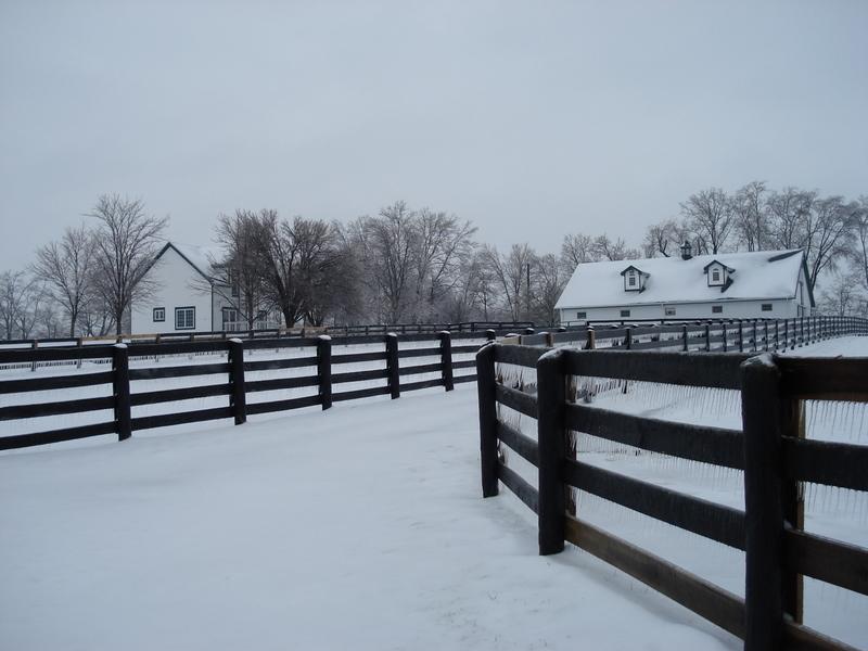 February 08 snow